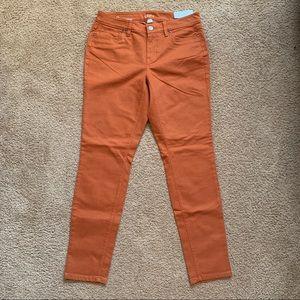 Ann Taylor Loft Curvy Skinny Burnt Orange Pants